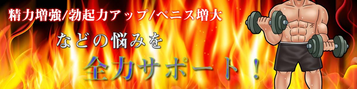 【男の性-解決屋】精力増強/勃起力アップ/ペニス増大などの悩みを全力サポート!